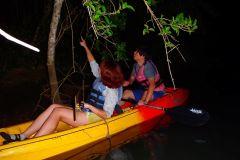 Kadena: passeio noturno de caiaque para observação de vaga-lumes de 2 horas