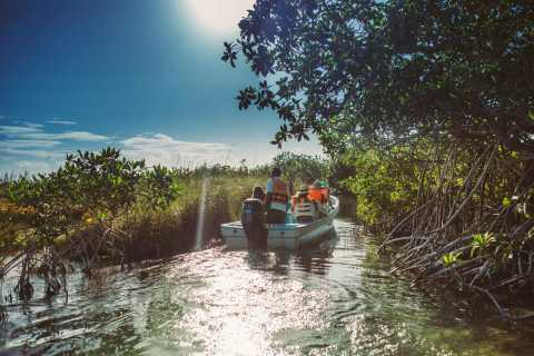 Desde Riviera Maya: Sian Ka'an Discovery Tour con almuerzo
