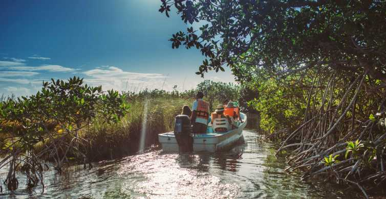 From Riviera Maya: Sian Ka'an Discovery Tour with Lunch