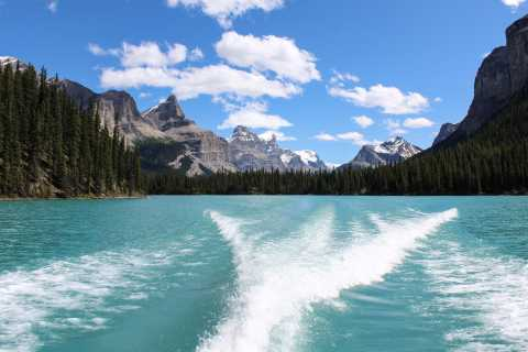 Jasper: Maligne Valley Wildlife Watching & Boat Tour