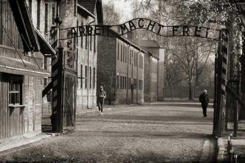 From Krakow: Full-Day Guided Tour to Auschwitz-Birkenau