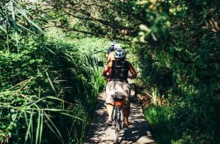 Mailand: Urban Forest E-Bike Tour