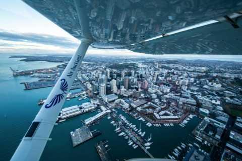 Auckland: Coromandel Scenic Flight with 2-Course Lunch
