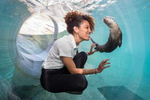 Zoo Miami: General Admission Ticket