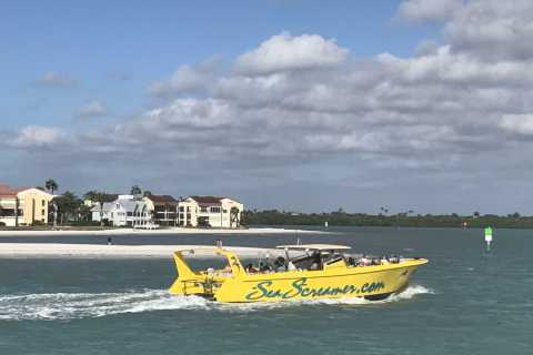 Clearwater: Sea Screamer Dolphin Watching Boat Ride Ticket