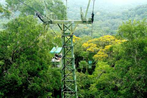From Panama City: Gamboa Rainforest Guided Tour with Lunch