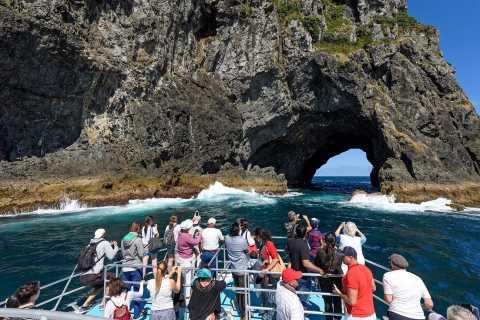 Auckland: Bay of Islands Tour with Waitangi Treaty Grounds