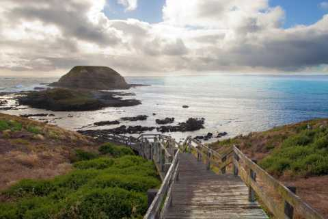 Melbourne: Healesville Sanctuary & Phillip Island Tour