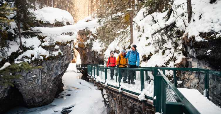 Banff: Morning or Afternoon Johnston Canyon Icewalk