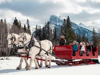 Banff: Familienfreundliche Pferdeschlittenfahrt