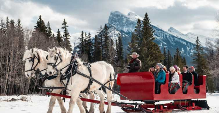 Banff: Family Friendly Horse-Drawn Sleigh Ride
