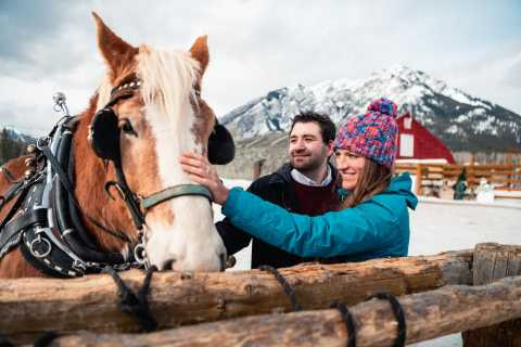 Banff: Romantic Horse-Drawn Sleigh Ride for Two
