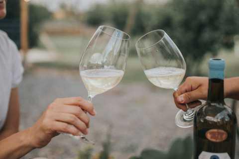 Querétaro: tour de cata de sidra y vino de destilería rural