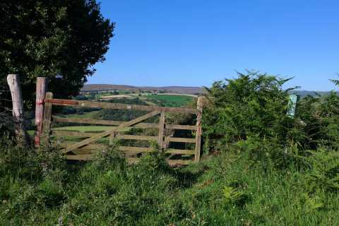 From York: Private Walking Tour of Yorkshire Moors