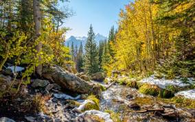 Rocky Mountain National Park Hike: from Denver or Boulder