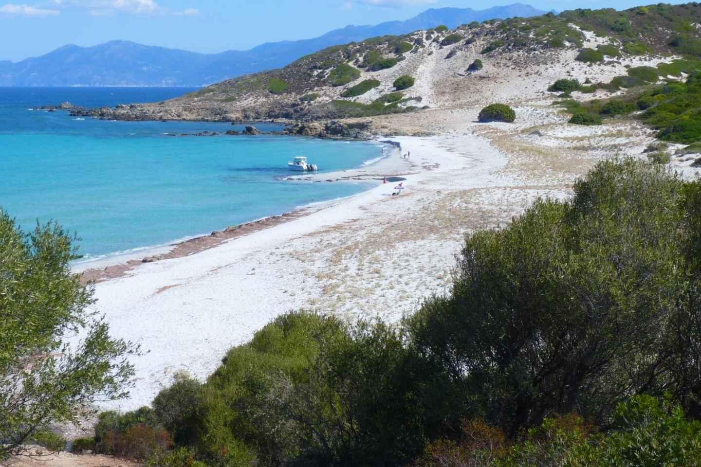 Ab Calvi: Agriatenwüste und Strand im Allrad-Fahrzeug