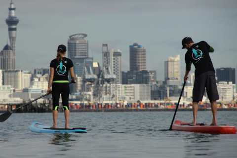 Auckland: Private Stand Up Paddle Boarding Lesson