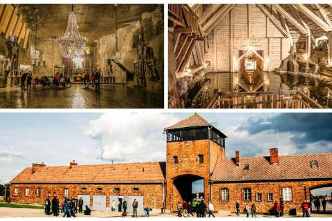 From Krakow: Auschwitz, Wieliczka Salt Mine & Pickup Options
