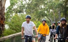 Melbourne: Sunrise Wildlife Adventure, SUP, Bike & Breakfast