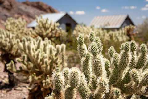 Tour 4x4 dell'Eldorado Canyon da Las Vegas