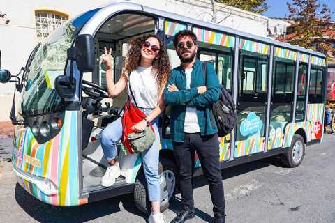Istanbul: biglietti per il traghetto per l'isola dei Principi e tour panoramico