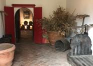 Ab Florenz: Halbtägige Wein- und Gourmet-Tour in Carmignano