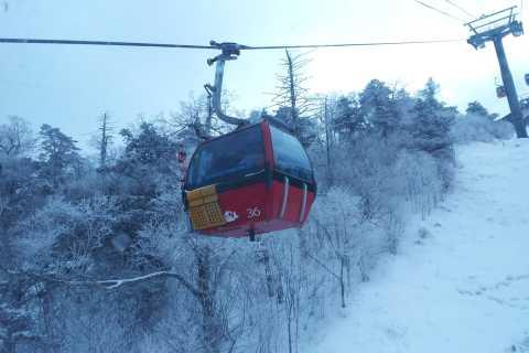 Seoul: Yongpyong Ski Resort Tour with Optional Ski Package