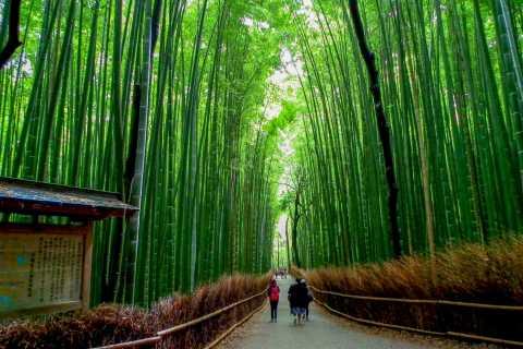 Kyoto: Japanese Gardens Private Customizable Tour