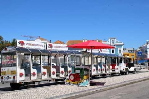 Aveiro: Tuka-Tuka Tourist Sightseeing Train
