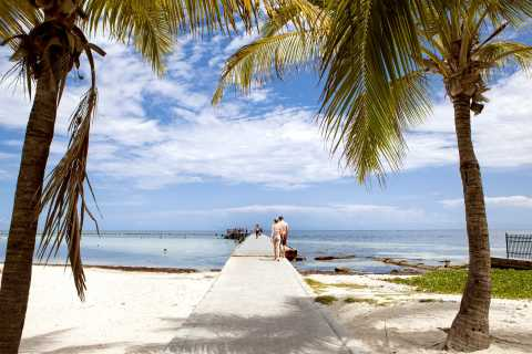 From Miami: Key West Full-Day Trip with Snorkeling and Transfer