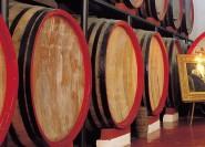 Marsala: Weingutstour mit Weinprobe und lokalen Produkten