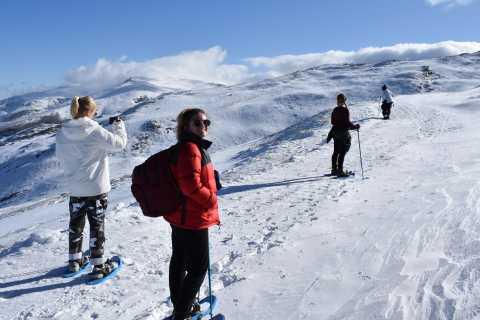 Sierra Nevada: caminata con raquetas de nieve