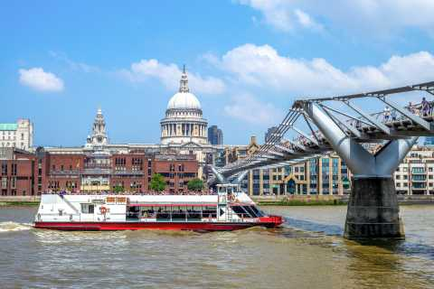 Londres: tour de Harry Potter a pie con crucero por el Támesis