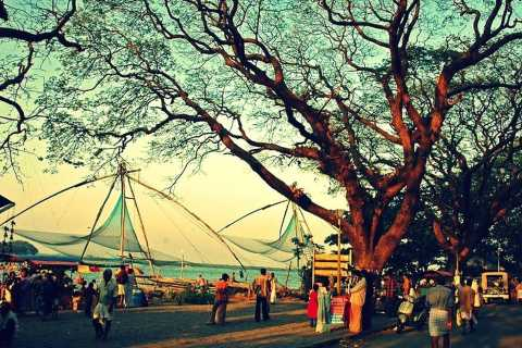 Kochi: 3-Day Best of Kerala Tour with Houseboat Cruise