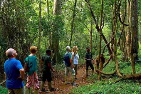 From Kochi: 3-Day Thekkady Wildlife Tour