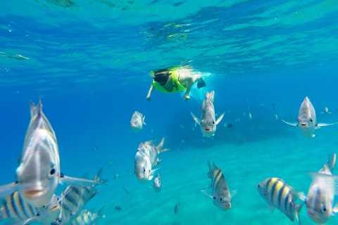Snorkeling Tour & Sosua Beach Day
