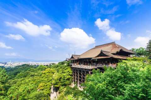 Kyoto: Private Tour with Local Licensed Guide