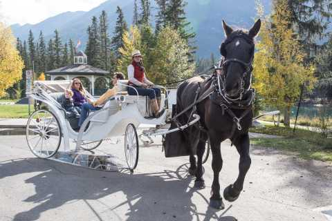 Banff: Private Horse-Drawn Carriage Ride