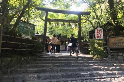 Kyoto: tempio Kiyomizu, palazzo imperiale e foresta di Arashiyama