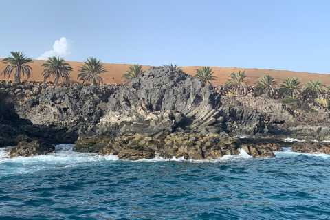 Tenerife: Underwater Lava Tongues Snorkel Excursion