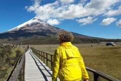 Excursão de 1 dia Parque Nacional Cotopaxi saindo de Quito