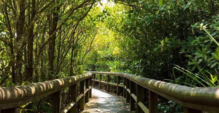 Okinawa: Full-Day Bus Tour to Yanbaru National Park