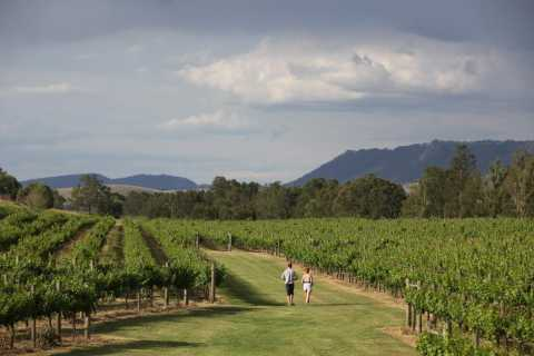 New South Wales: 4-Day Driving Wine and Food Tour