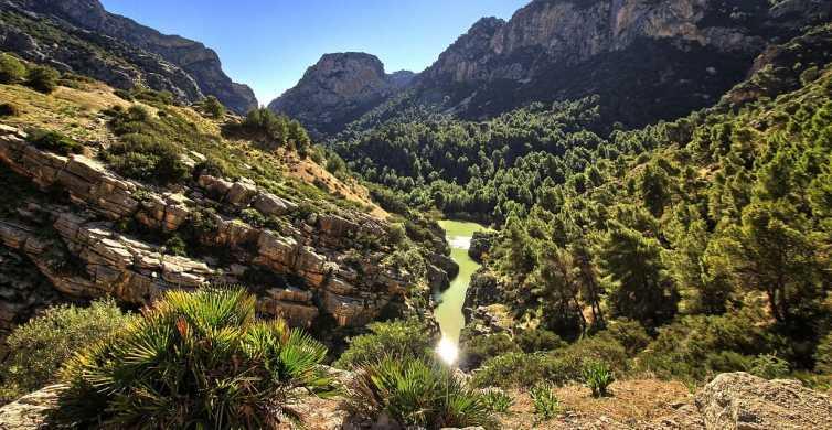 Málaga: Guadalhorce River Mouth Sunset Walking Tour
