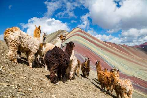 From Cusco: Rainbow Mountain Full-Day Guided Private Tour