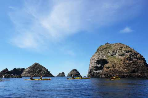 The Catlins: Sea Kayak Tour to Nugget Point Lighthouse
