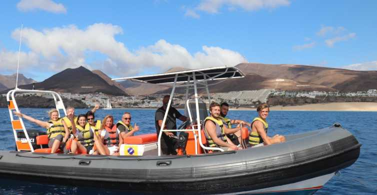 Fuerteventura: 1.5-Hour Dolphin and Whale Watching Tour