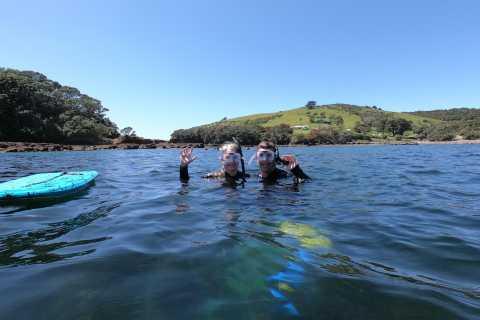 Leigh: visite guidée de plongée en apnée sur Goat Island pour les débutants