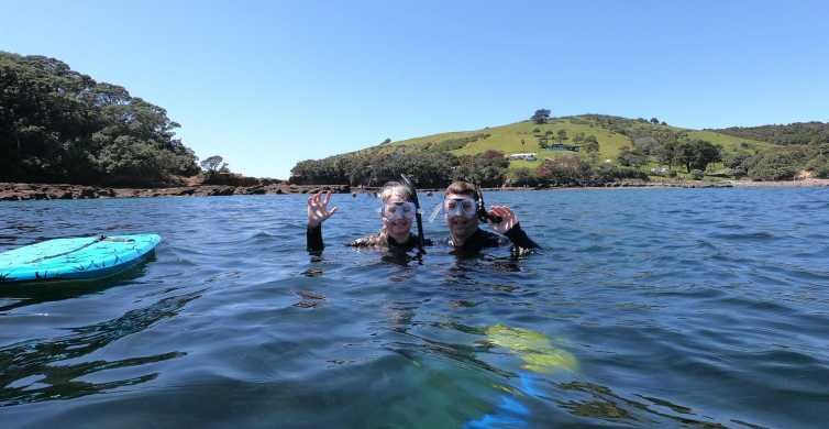 Leigh: Goat Island Guided Snorkeling Tour for Beginners