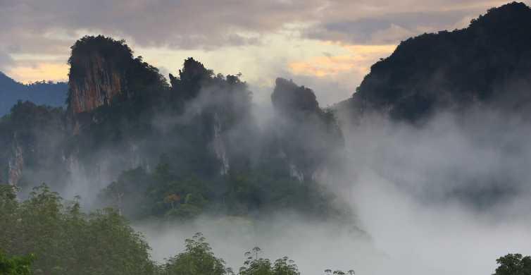Khao Sok National Park: Half-Day Guided Rainforest Trek